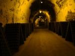 Ruinart cellars, France 2012